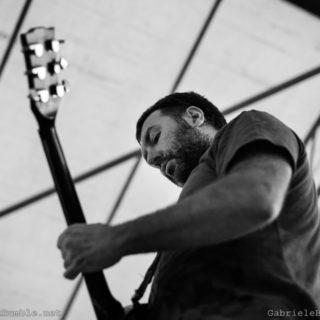 Elephant Rumble Live Giacomo Morandi